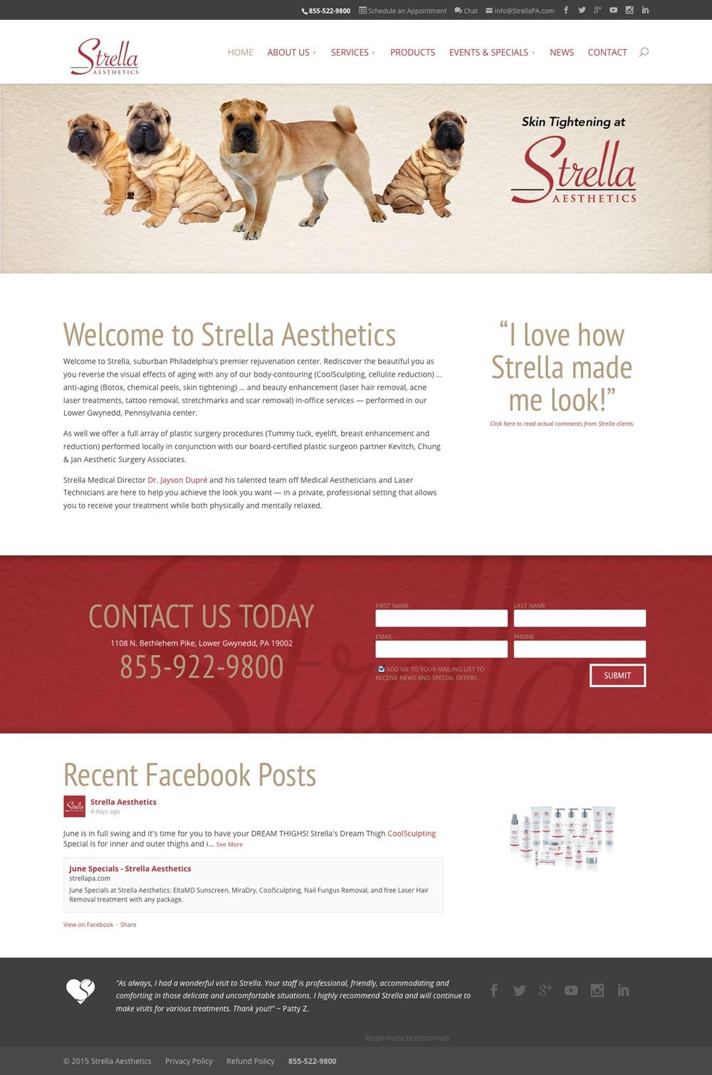 Homepage screenshot of StrellaPA.com